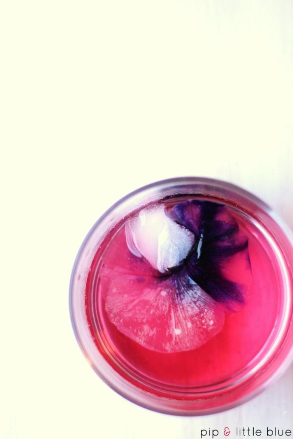 raspberryinfusedgin2